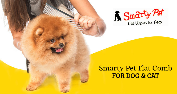 smarty pet flat comb for dog and cat